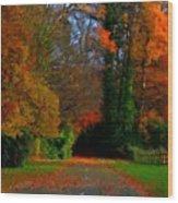 Landscape Hd Wood Print