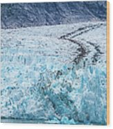 Sawyer Glacier At Tracy Arm Fjord In Alaska Panhandle Wood Print