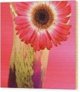2401c-001 Wood Print