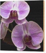 Orchids Kauai Wood Print