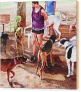 #258 Rruff Dog Park Wood Print