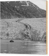 Sawyer Glacier At Tracy Arm Fjord In Alaska Panhandle Wood Print