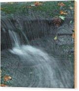 260 Olmsted Falls Wood Print