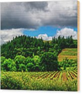 2623- Comsrock Winery Wood Print