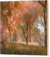 2624 Wood Print