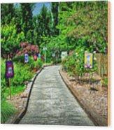 2632- Coffaro Vineyard Wood Print