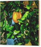 2644- Lemon Tree Wood Print