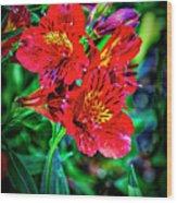 2647- Red Flowers Wood Print