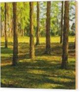 Nature Art Landscape Wood Print