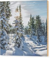 Amazing Landscape With Frozen Snow-covered Trees In Winter Morning  Wood Print