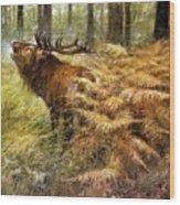 nature Rien Poortvliet Wood Print