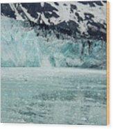 Alaska_00028 Wood Print