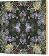 Wormhole Mandala Wood Print