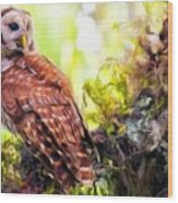 Landscape Nature Wood Print