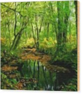 Landscape Nature Wood Print