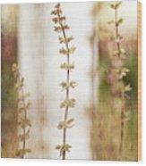 2991 Wood Print