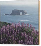 2a6101 Arched Rock And Blue Pod Lupine Ca Wood Print