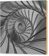 2x1 Abstract 434 Bw Wood Print