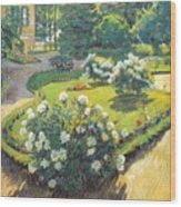 1910 Sergey Vinogradov Wood Print