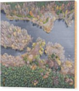 Aerial View Of The Forrest With Different Color Trees.  Wood Print