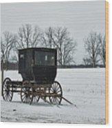 Amish Buggy Near Shipshe Wood Print