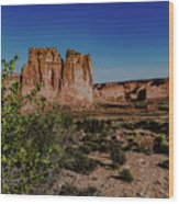 Arches Park National  Wood Print