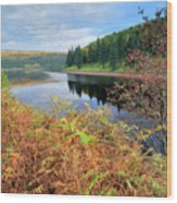 Autumn Derwent Reservoir Derbyshire Peak District Wood Print