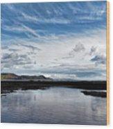 Back Beach 2 - Lyme Regis Wood Print