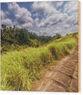 Bali Landscape Wood Print