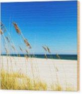 Beautiful Beach Wood Print