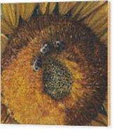 3 Bees Wood Print