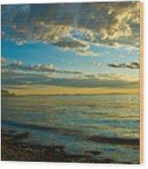 Birch Bay Wood Print
