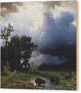 Buffalo Trail  The Impending Storm Wood Print
