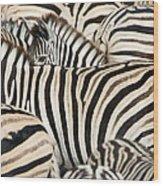 Burchells Zebras Equus Quagga Wood Print