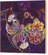 Butterfly Macro Pose Plant Green  Wood Print