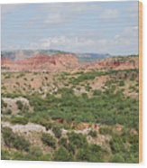 Caprock Canyon State Park  Wood Print