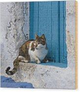 Cat In A Doorway, Greece Wood Print