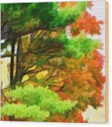 3 Colors Of The Nature 1 Wood Print