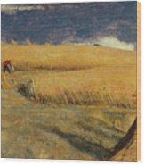 Cornfield At Ewell Wood Print
