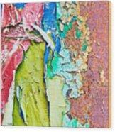 Cracked Paint Wood Print