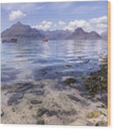 Cuillin Mountains From Elgol Wood Print
