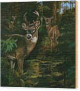 3 Deer Watching Wood Print