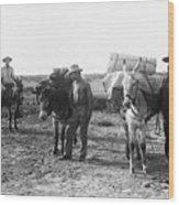 3 Desert Prospectors C. 1900 Wood Print