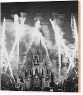 Disney Castle At Night Wood Print