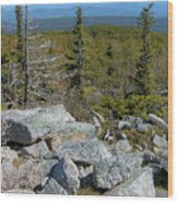 Dolly Sods Wilderness Wood Print by Thomas R Fletcher