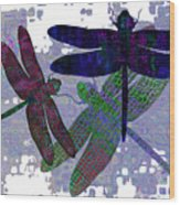 3 Dragonfly Wood Print
