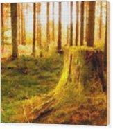 Drawings Landscapes Wood Print