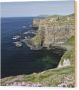 Dunluce Castle Northern Ireland Wood Print