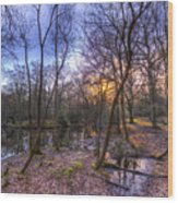 Early Morning Forest Pond Wood Print
