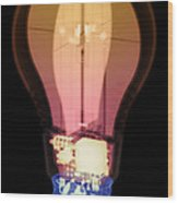 Energy Efficient Led Light, X-ray Wood Print